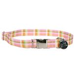 View Image 1 of Southern Dawg Madras Dog Collar by Yellow Dog - Pink