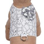 View Image 1 of Special Occasion Bailey Dog Harness by Susan Lanci - White Charlotte's Web with Platinum Flowers