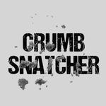 View Image 2 of Crumb Snatcher Dog Shirt - Gray