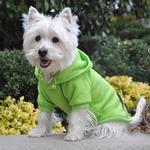 View Image 2 of Sport Dog Hoodie by Doggie Design - Green Flash