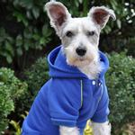 View Image 2 of Sport Dog Hoodie by Doggie Design - Nautical Blue