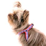 View Image 3 of Stars and Stripes Dog Harness by Up Country