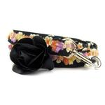 View Image 2 of Step-In Dog Harness by Diva Dog - Coco Maize