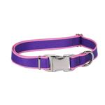 View Image 1 of Sterling Dog Collar by Yellow Dog - Purple with Light Pink