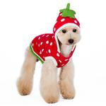 View Image 2 of Strawberry Dog Sweater by Dogo - Red