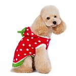 View Image 4 of Strawberry Dog Sweater by Dogo - Red