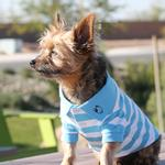 View Image 1 of Striped Dog Polo by Doggie Design - Blue Niagara and White