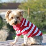 View Image 1 of Striped Dog Polo by Doggie Design - Flame Scarlet Red and White