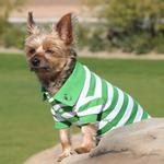 View Image 1 of Striped Dog Polo by Doggie Design - Greenery and White