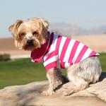 View Image 1 of Striped Dog Polo by Doggie Design - Pink Yarrow and White