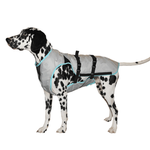 View Image 1 of Suitical Dry Cooling Dog Vest