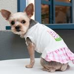 View Image 9 of Watermelon Dog Dress by Dogo