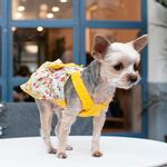 View Image 11 of Southern Belle Dog Dress by Dogo