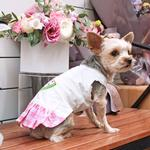 View Image 10 of Watermelon Dog Dress by Dogo