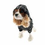 View Image 2 of Superhero Dog Costume - Black Spider Dog