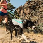 View Image 4 of Swamp Cooler Dog Vest by RuffWear - Graphite Gray with Blue Wave