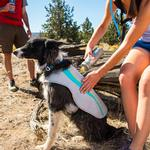 View Image 2 of Swamp Cooler Dog Vest by RuffWear - Graphite Gray with Blue Wave