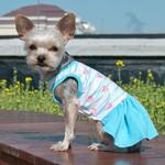 View Image 1 of Sweet Heart Dog Dress by Dogo