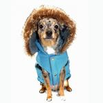 View Image 2 of Swiss Alpine Ski Dog Vest by Hip Doggie - Blue