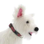 View Image 2 of Tartan Adjustable Clip Dog Collar by RC Pet - Red