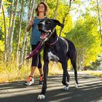 View Image 2 of Top Rope Dog Collar by RuffWear - Purple Dusk