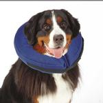 View Image 1 of Total Pet Health Inflatable Pet Collar - Blue