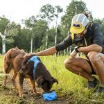 View Image 2 of Trail Runner Travel Dog Bowl By RuffWear