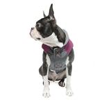 View Image 5 of Trekking Dog Jacket by Gooby - Purple
