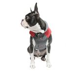 View Image 5 of Trekking Dog Jacket by Gooby - Red