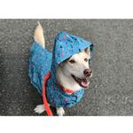View Image 2 of Shoal Packable Dog Rain Poncho