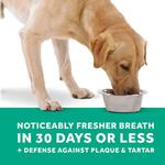 View Image 4 of TropiClean Fresh Breath Drops for Pets