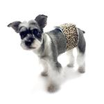 View Image 2 of Oscar Newman Wild Child Dog Belly Band - Leopard
