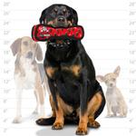 View Image 2 of Tuffy Dog Toys - Ultimate Bone Red Paw Print