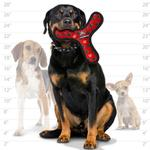 View Image 3 of Tuffy Dog Toys - Ultimate Bowmerang Red Paw Print