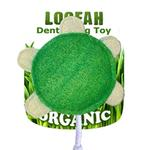 View Image 1 of Turtle Loofah Dental Dog Toy