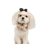 View Image 1 of Twilight Neckguard Dog Collar by Pinkaholic - Beige