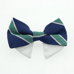 View Image 1 of Dog Bow Tie Collar Attachment by Doggie Design - Navy Blue and Green Stripe