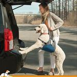View Image 1 of Up and About Dog Lifter by Kurgo