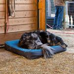 View Image 7 of Urban Sprawl Dog Bed by RuffWear - Overcast Blue