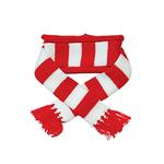 View Image 1 of Urban Stripe Dog Scarf by Dogo - Red