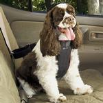 View Image 3 of Vehicle Safety Dog Car Harness