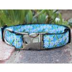View Image 2 of Daisy Dog Collar and Leash Set by Diva Dog