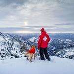 View Image 2 of Vert™ Dog Jacket by RuffWear - Sockeye Red