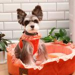 View Image 3 of Vivien Dog Harness by Puppia - Orange