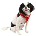 View Image 3 of Vivien Dog Harness by Puppia - Red