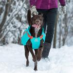 View Image 4 of Vortex Parka Dog Coat - Teal and Orange