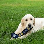 View Image 2 of Toronto Maple Leafs Hockey Stick Dog Toy