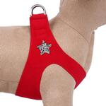 View Image 1 of Rock Star Step-In Dog Harness by Susan Lanci - Red