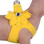 View Image 1 of Water Lilly Step-In Dog Harness by Susan Lanci - Sunshine