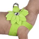 View Image 1 of Water Lilly Step-In Dog Harness by Susan Lanci - Kiwi